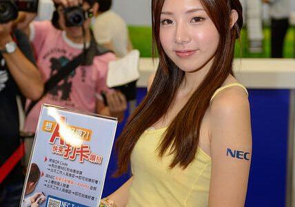 插花之 2013 台北電腦應用展